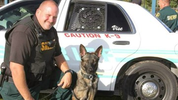 Polk County Sheriff's Office K-9 expected to recover after being stabbed