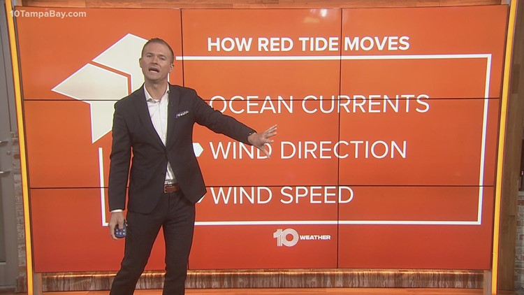 How does red tide spread?