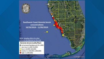 High levels of red tide creep up Florida\'s Gulf Coast, now ...
