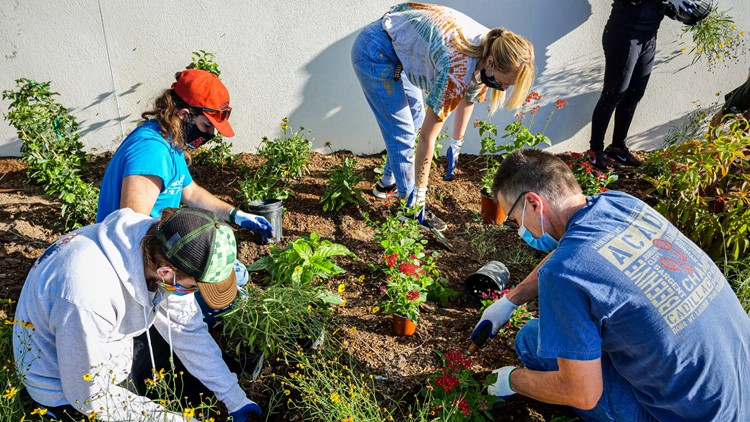 Tampa's Super Bowl host committee wraps up year of environmental projects