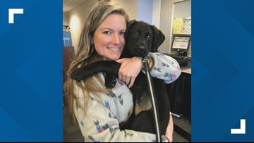 Florida woman trains guide dogs to be the 'best of the best'