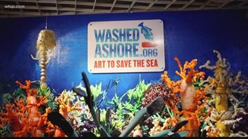 Florida Aquarium exhibit highlights effort to clean up beaches