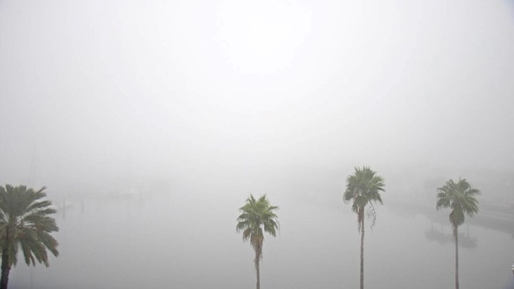 Why did sea fog blanket Tampa Bay this morning?