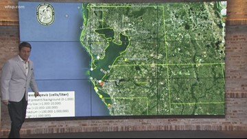 Red tide concentrations sharply fall across Tampa Bay region