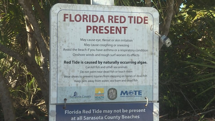 Red tide found in at least 4 Florida counties