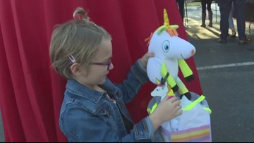 5-year-old with rare cancer gets her wish made