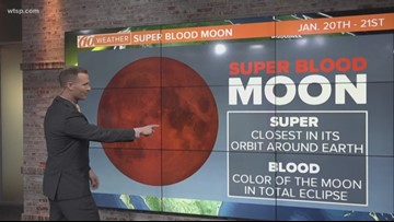 Super blood moon January 2019: When to watch