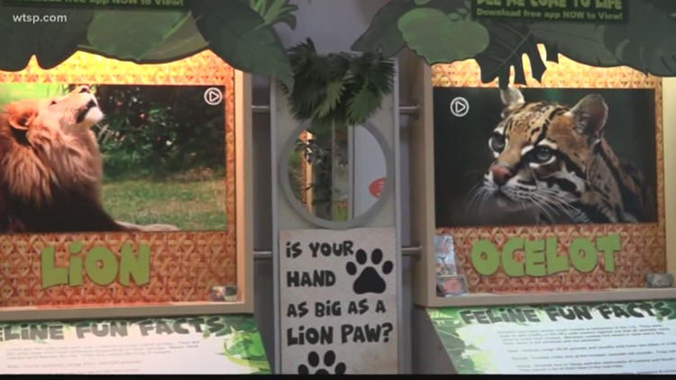 Tampa Bay's first augmented reality zoo opens in North Tampa