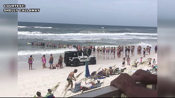 Beachgoers form human chain to rescue swimmer on Florida beach