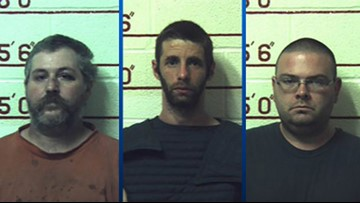 Three men get prison for having sex with 12 animals