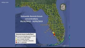 Red tide returns: Harmful algae appears again in parts of Florida