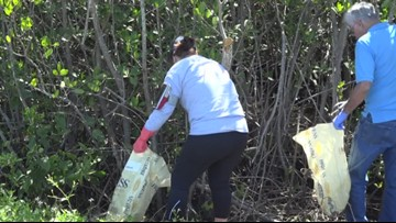Hundreds of pounds of trash collected in Tampa Bay area on Earth Day 2019