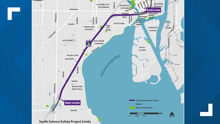 Map of the South Selmon Safety Project limits