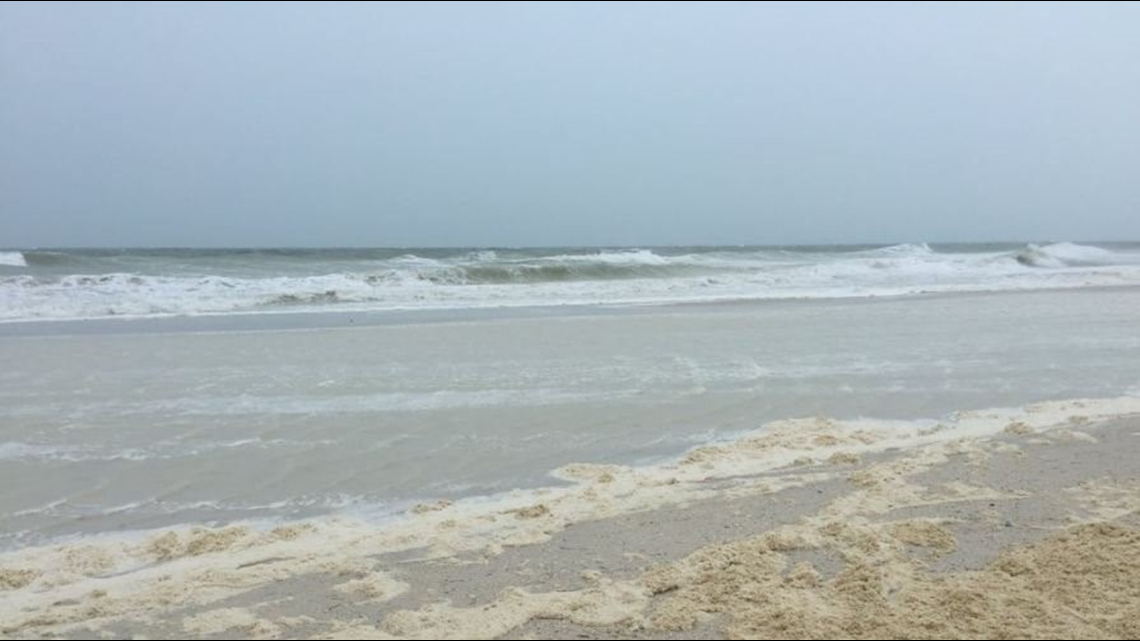 Red tide returns, found south of Anna Maria Island
