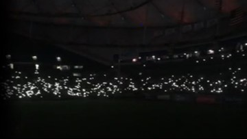 Bird's nest knocks out power to the Trop, delays Rays game
