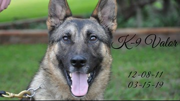'Valor became family.' Florida law enforcement officers bid a sad farewell to K-9