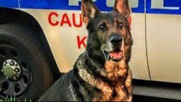 Clearwater police say goodbye to K-9 officer