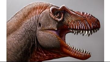 New dinosaur found in Canada nicknamed 'reaper of death'