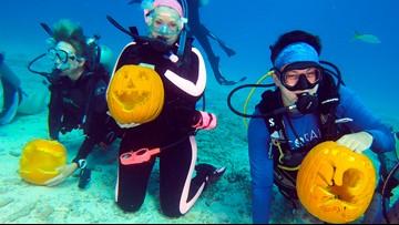 Divers carve pumpkins underwater for Florida Keys contest