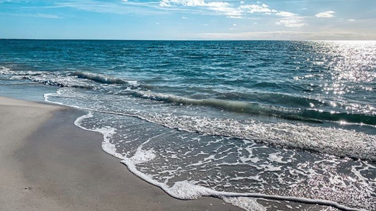Headed to the beach this weekend? Watch out for red tide in these areas
