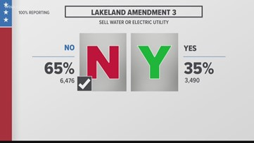 Lakeland voters reject referendum to make it easier to sell off Lakeland Electric