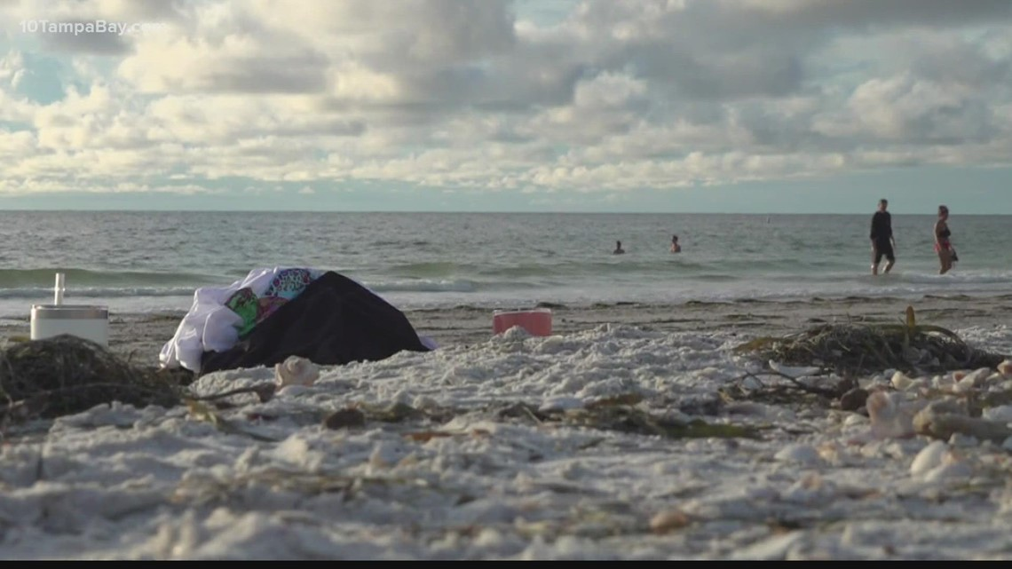 Police warn to watch out for beach bandits looking to steal your valuables