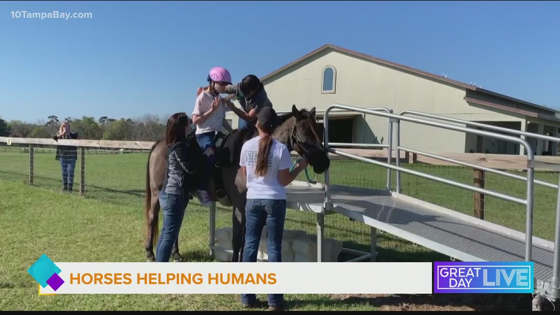 Horses helping humans