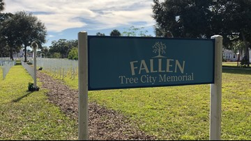 A tree for a tree: Gulfport tries to recover, but it's unclear how many trees have been cut down