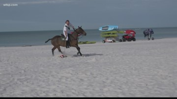 Don CeSar to host polo matches on St. Pete Beach
