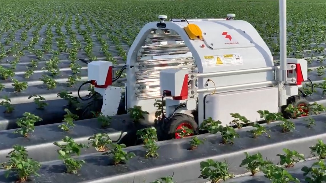 This robot could make pesticides obsolete